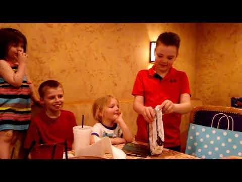 April 6, 2019 Vlog #1756 Leelan's Birthday Party