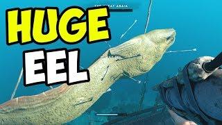 HUNTING the MONSTER EEL BOSS!! - Stranded Deep Gameplay - Episode 11