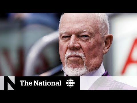 CBC News: The National: Don Cherry admits he should have used different words