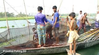 Wow! Amazing Big Fishing Catch A Lot of Fish ! নদীর বড় মাছ দেখলে মনটা ভরে যায়।