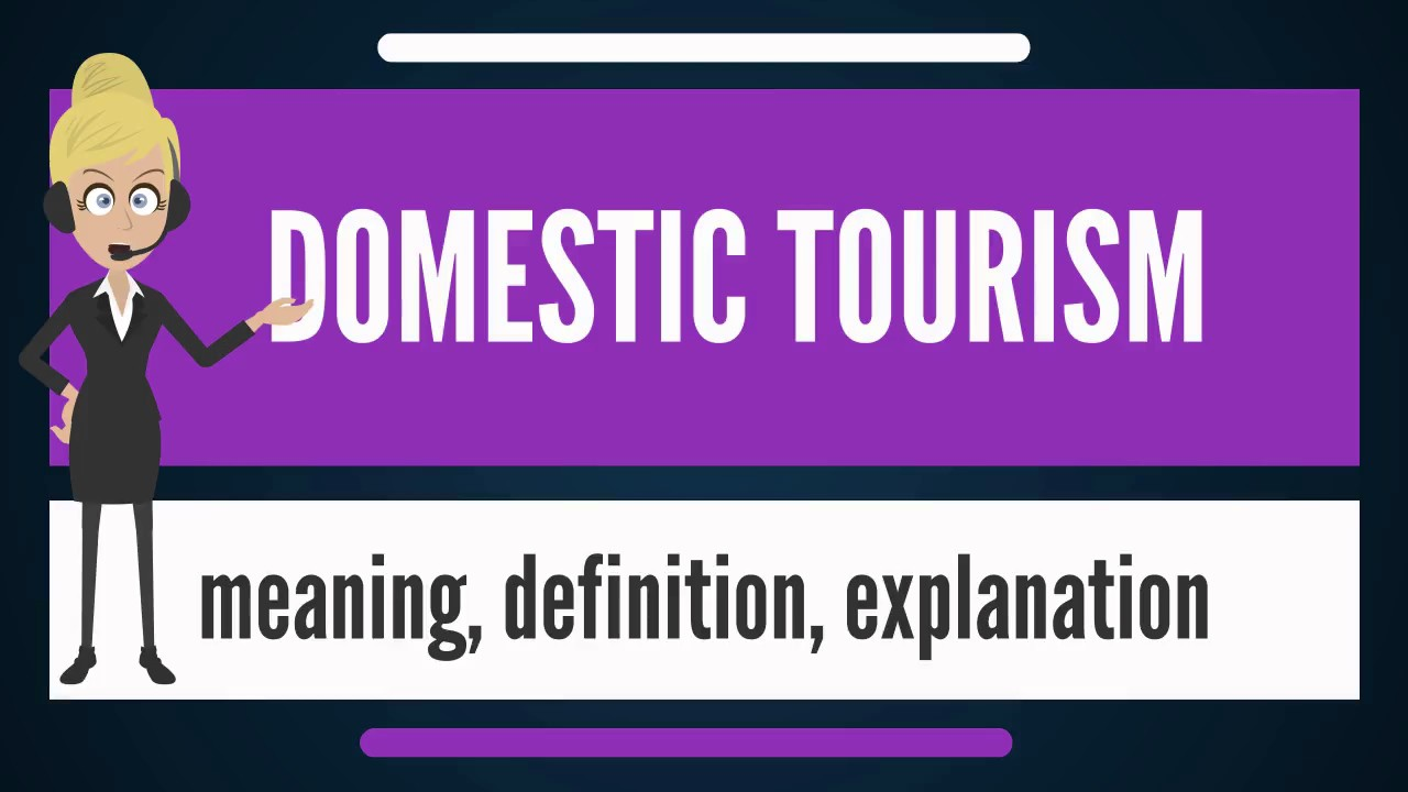 What is DOMESTIC TOURISM? What does DOMESTIC TOURISM mean? DOMESTIC TOURISM meaning & explanation