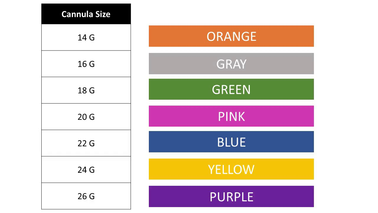 Color coding series lesson iv cannula hot clip also catheter size aksuy  eye rh