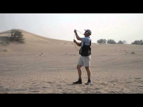 Falconry in Dubai Desert Conservation Reserve