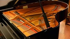 Yamaha C5 Grand Piano for Sale - Yamaha C5 Piano - Built in 2001
