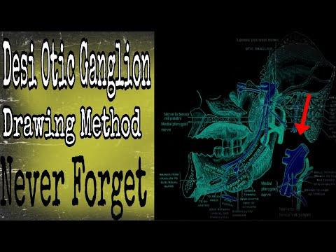 Desi Otic ganglion method  Easy Method  Neuro Anatomy - YouTube