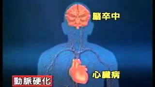 NHK活性酸素と抗酸化酵素