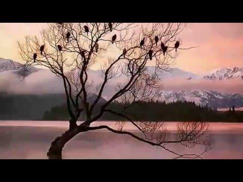 nyanyian kasmaran voc ebiet g ade~lukisan kehidupan