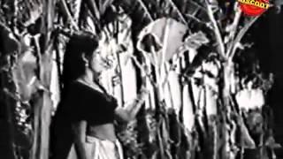 ulsavam 1975 full malayalam movie