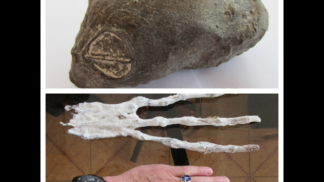 Two Strange Organic Artifacts Found In The Desert Of Nazca
