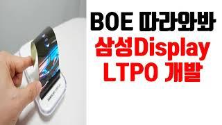 BOE 따라와봐 삼성Display LTPO 개발