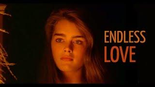 ENDLESS LOVE - KARAOKE