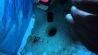 Сигналізатор клювання БС-1