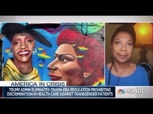 Imara Jones on MSNBC: Trump's transgender healthcare rule means 'our humanity is not equal'