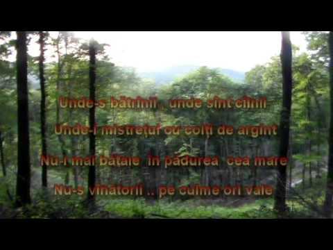 Agriș - pădure
