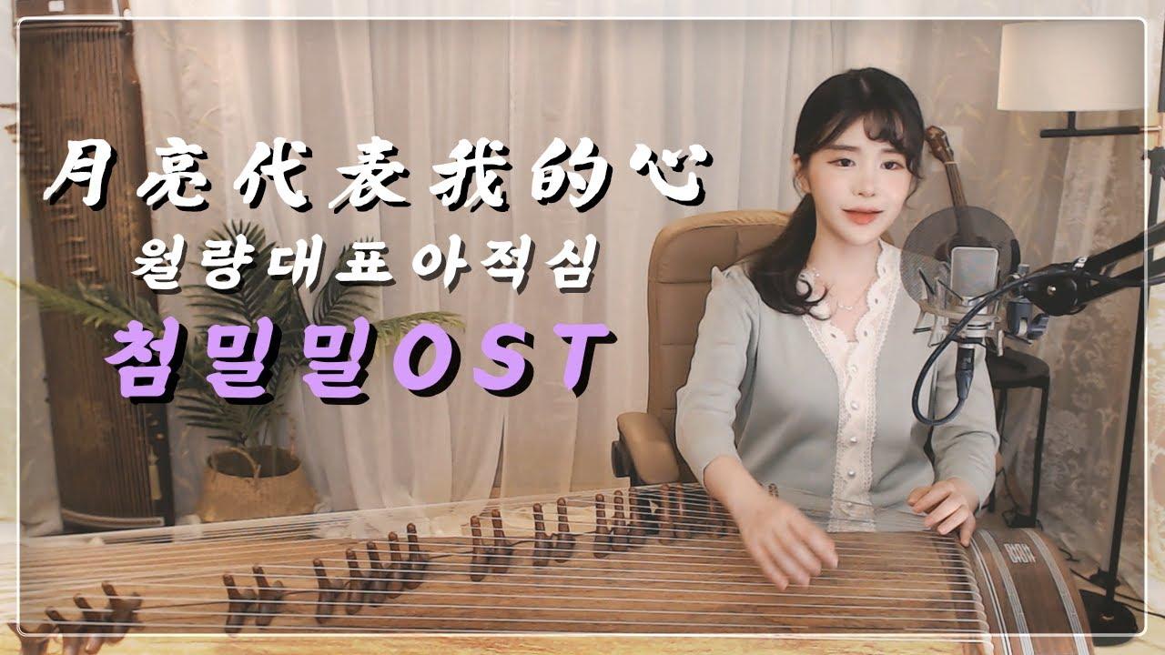 월량대표아적심(月亮代表我的心) - 등려군(鄧麗君) 첨밀밀 甜蜜蜜 OST  가야금 COVER