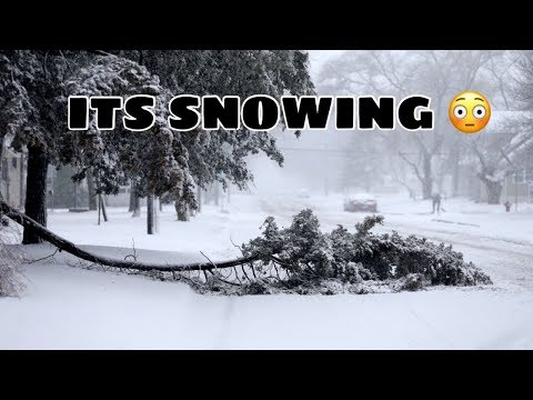 MY FIRST TIME SEEING SNOW HOUSTON 2017 (HILARIOUS)
