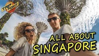 СИНГАПУР. ЦЕНЫ и ОБЗОР: отель, экскурсии, еда, лучшие места. АРТ ВЛОГ