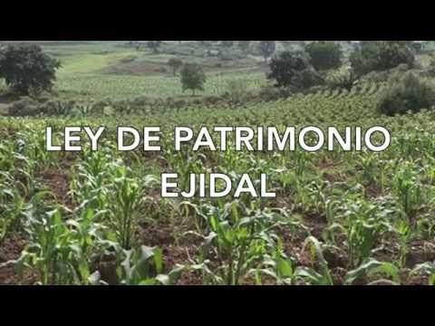LEY DE PATRIMONIO EJIDAL