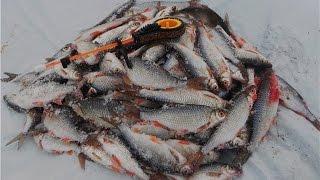 Рыбалка на Ямале. Первый лед.(Ребята подписывайтесь на мой канал, поддержите!, 2016-10-19T16:43:40.000Z)