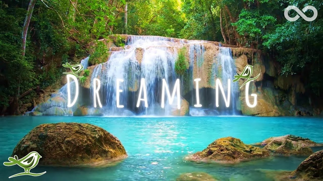 Download Dreaming • Relaxing Zen Music with Water Sounds for Sleep, Spa & Meditation