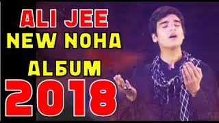 Ali Jee New Album 2018