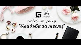 """Свадебный проект """"Свадьба за месяц"""" [Выпуск #2]"""