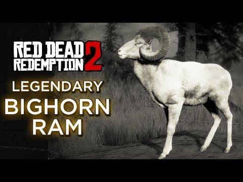 Red Dead Redemption 2 - Legendary Bighorn Ram