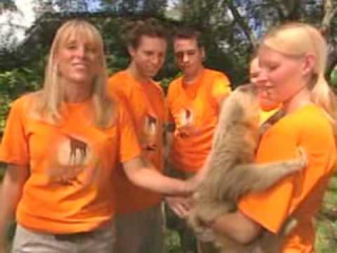 Seaworld Busch Gardens Adventure Camps Youtube