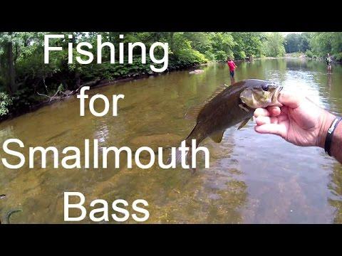 Fishing The Neshaminy Creek For Smallmouth Bass -- Bucks County PA