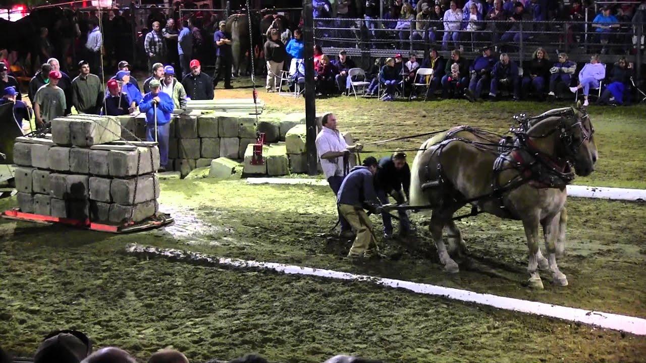 Download Draft Horse Pull 2013 Deerfield Fair NH Pulling Video 55