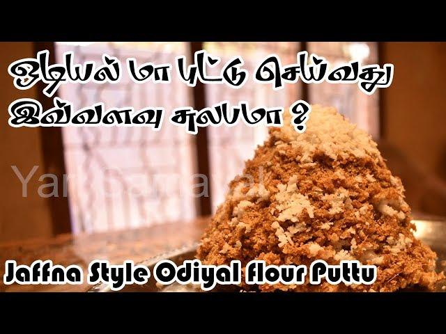 யாழ்ப்பாணத்து சுவைமிகு ஒடியல் மா புட்டு செய்வது இவ்வளவு சுலபமா ? | Jaffna Style Odiyal flour Puttu
