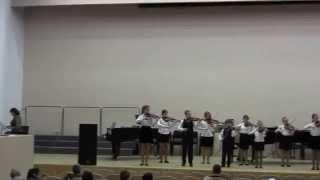 Выступление ансабля скрипачей