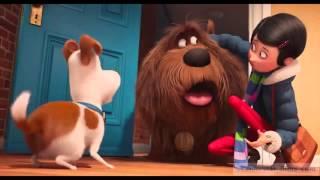 Смотреть онлайн - Тайная жизнь домашних животных - Русский трейлер 2 HD (2016)