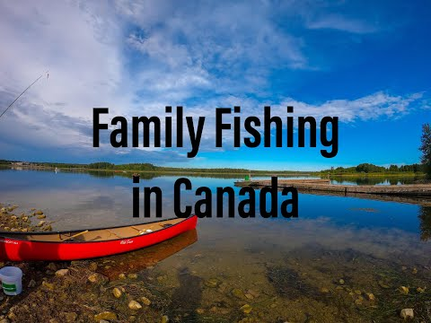 Fishing In Ontario |Beginners Tips|Fishing Licence