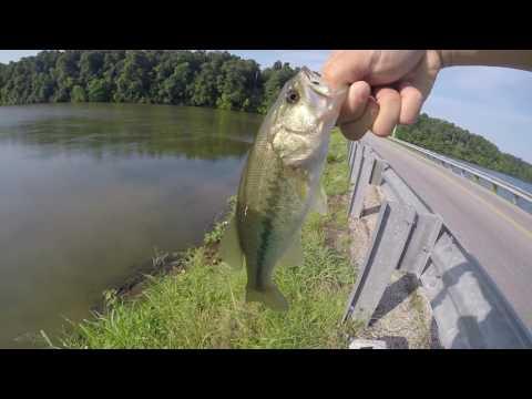 Bass Fishing On Fellows Lake, Springfield, MO
