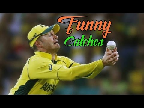 Top 10 Funny Catches in Cricket History Ever  HD™