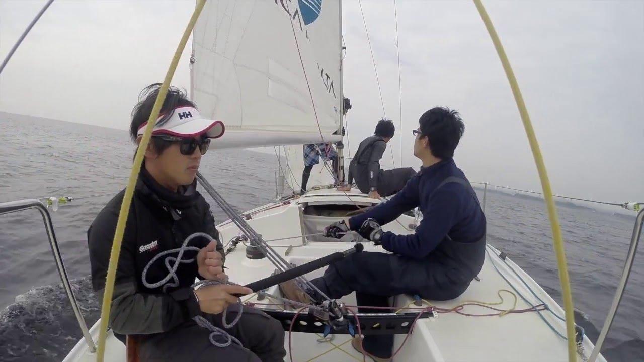 ヨット レース パラオ