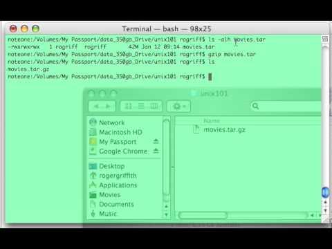 Unix 101 Commands: gzip (gunzip)