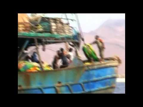 Radio Reporter Exposes Somali Piracy