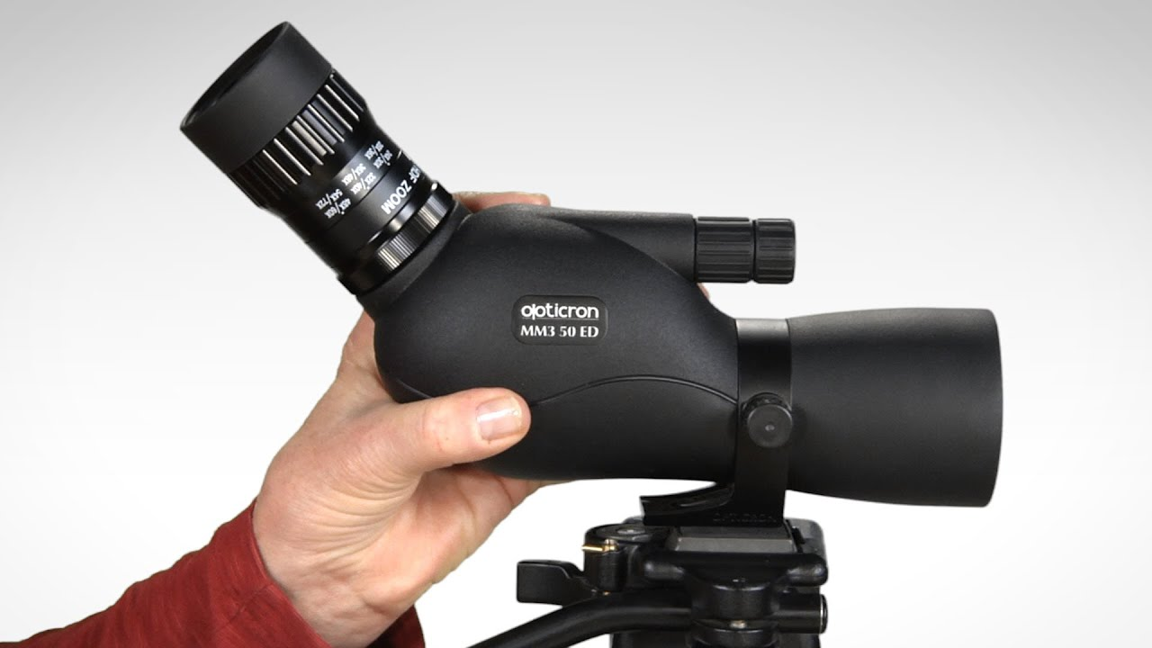Opinion you Opticron mighty midget