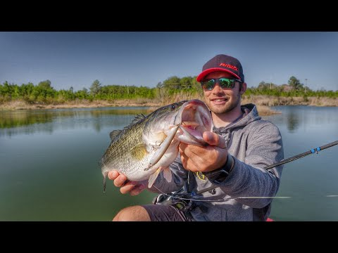 Why Use Topwater Prop Baits As Search Lures For Bass