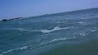 Waverunners in Tampa 2 Thumbnail