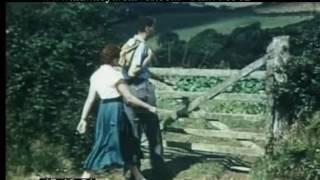 Devon Countryside And Farming, 1950s - Film 96562