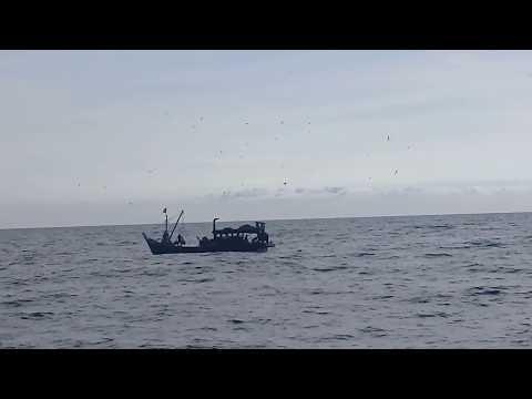 Fishing Boat // South China Sea // Beautiful ocean