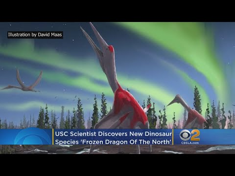 USC Scientist Discovers New'Frozen Dragon Of The North' Dinosaur Species - YouTube