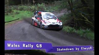 WRC Wales Rally GB 2019 | SHAKEDOWN [HD]