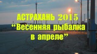 рыбалка в Астрахани 2015 апрель