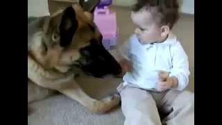 Собаки и дети, прикол Смешное видео с детьми(СЕКРЕТЫ домашнего уюта раскрываются ЗДЕСЬ: http://bit.ly/1thYswQ СМОТРИ! СМОТРИ! Дети! Рождение ребенка - счастливы..., 2014-10-01T19:49:04.000Z)