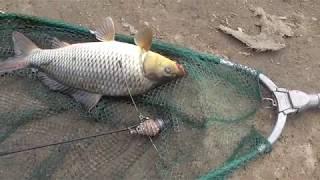 Отчёт о рыбалке Рефтинское водохранилище