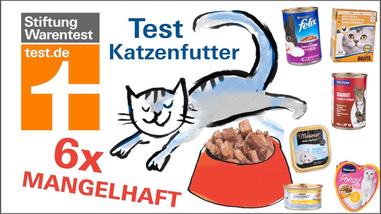 Katzennassfutter Test